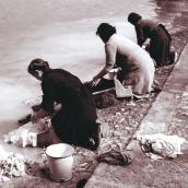 Lisa Batacchi - Riduzione di fiume ad argine