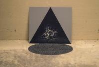 Eva Sauer Titolo: Lilith, 2015 Tecnica: Dibond, fotografia, semi Dimensioni installazione: variabili Dimensioni foto: 40X43 cm Prezzo: 250€ RICHIEDI INFORMAZIONI: info@forwardforward.org